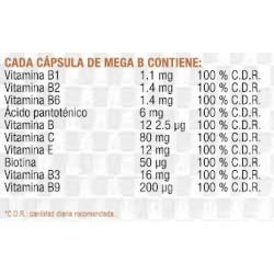 BCAA GLUTAMINE 10000